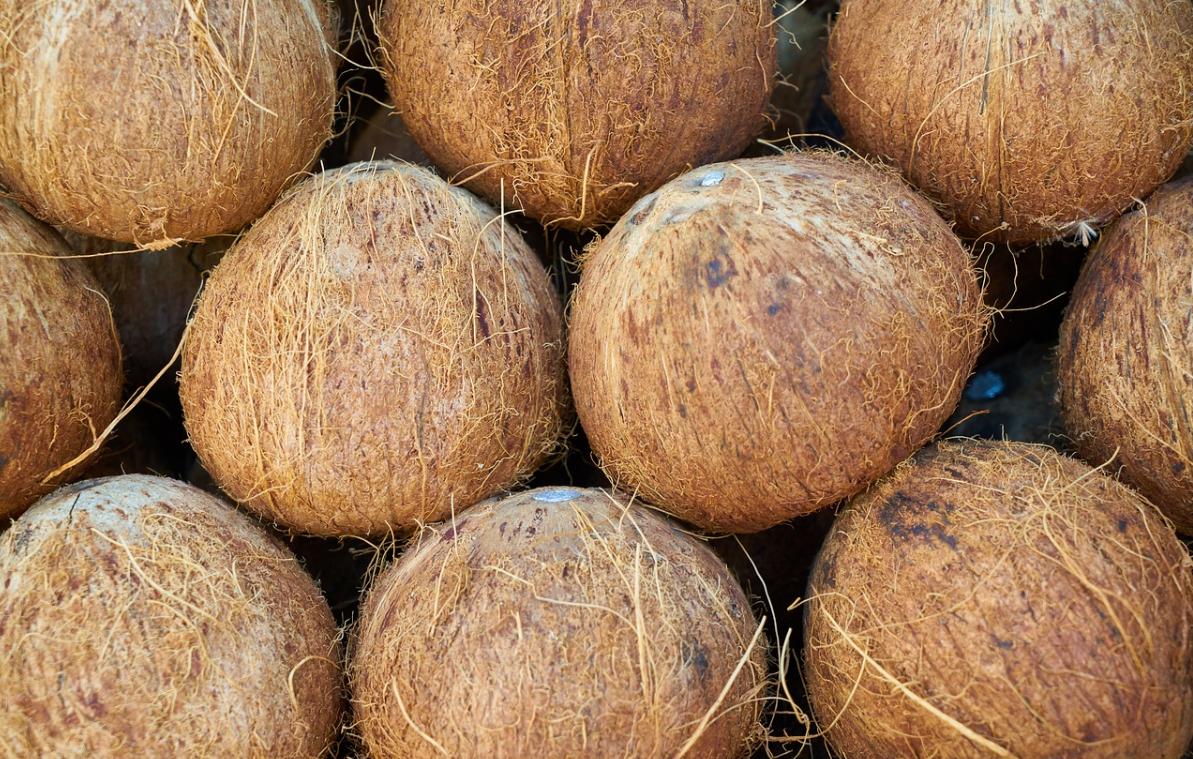 připravené kokosy